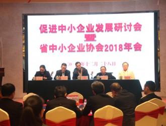 促进中小企业发展研讨会暨省中小企业协会2018年会圆满召开