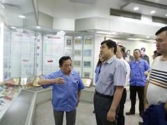 商务部电子商务司副司长蔡裕东一行莅临彩虹指导工作
